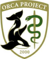 ORCA PROJECT 2000